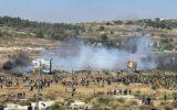 ۲۴۱ شهید و ۷۸۰۳ زخمی در حملات صهیونیستها به فلسطینیها