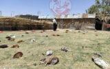 تلف شدن ۱۸۵ قطعه مرغ خانگی در«مهران»
