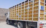 کشف بیش از ۸ تن مرغ زنده قاچاق در بدره