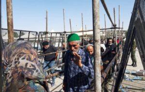 حال و هوای زائرین اربعین حسینی در مرز مهران