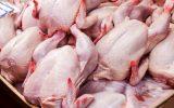 هرگونه افزایش قیمت مرغ در ایلام غیر قانونی می باشد