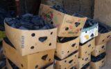کشف محموله ۶ تنی زغال قاچاق در ایلام