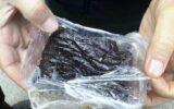 کشف یک کیلوگرم مواد مخدر از یک سوداگر مرگ در آبدانان